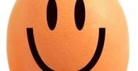 214590_happy_egg