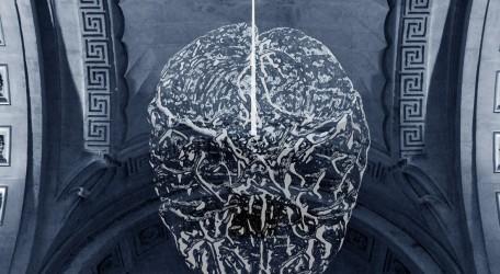 cortex visual - final