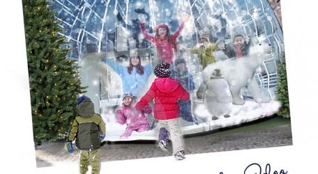 Giiant Snowplay Igloo.jpg