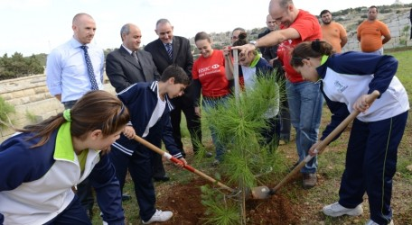 HSBC Malta Foundation supports indigenous tree planting in Gharghur - 1