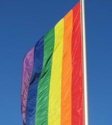 rainbow-flag-1392509-m