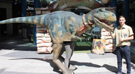 Bay Street T-Rex 1