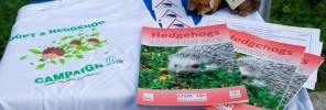 81 - HSBC hedgehog conservation