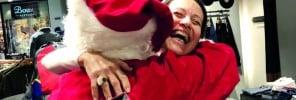 82 - HSBC Christmas cheer 2