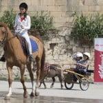 08 - HorseRacingAcademy_6429